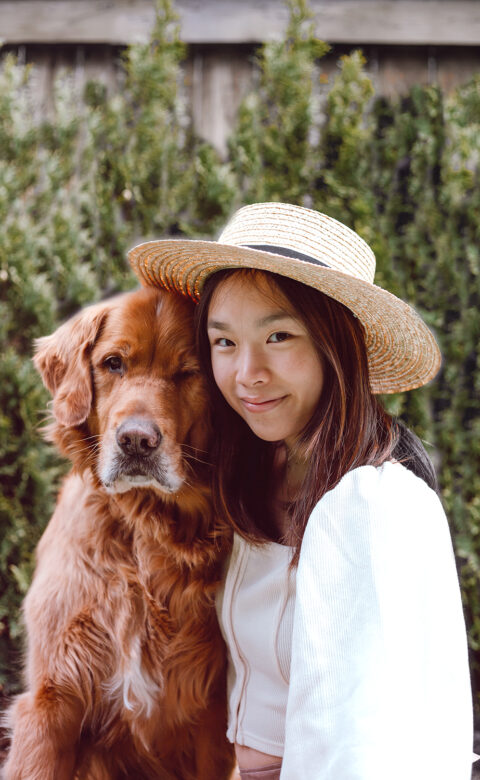 dogs and sun protection