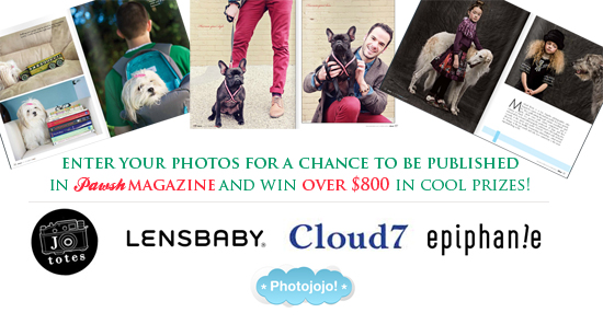 Pawsh-Photo-Contest-banner-3