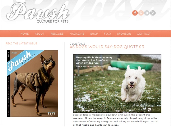 new-pawsh-website
