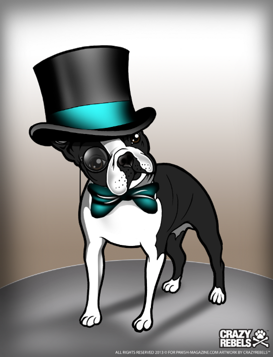 Pedigree-poems-boston-terrier