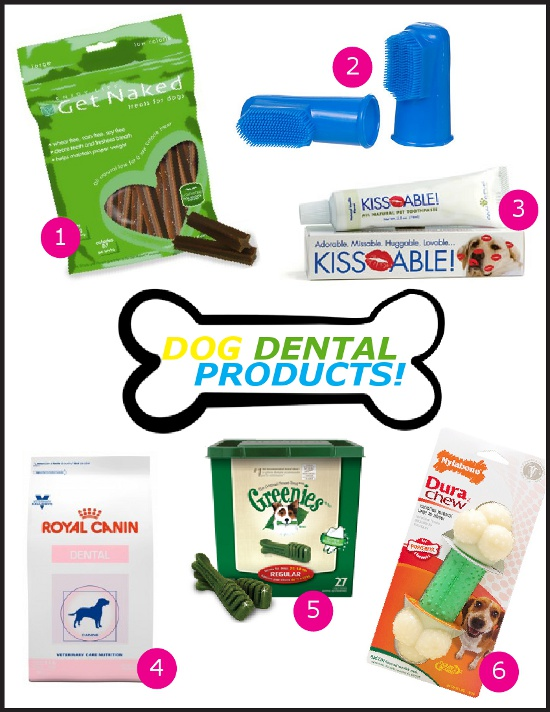 dog-dental-products