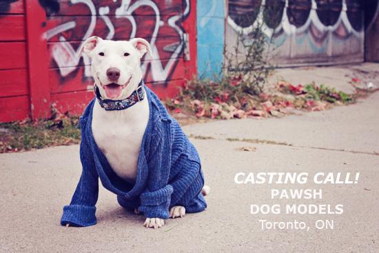 2013 Casting Calls
