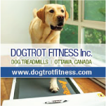 Dog Trot Fitness