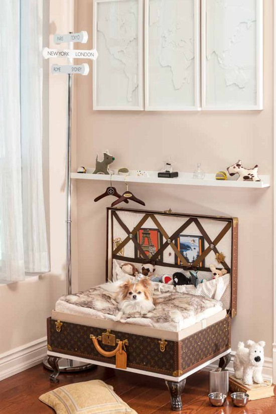 PETS AT HOME: DESIGNING DOG ROOMS | Pawsh Magazine