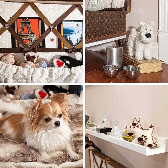 PETS AT HOME DESIGNING DOG ROOMS Pawsh Magazine