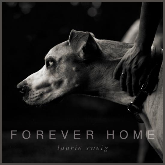 foreverhome_1