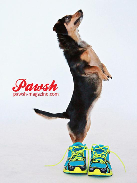 Pawsh-print-shop-550