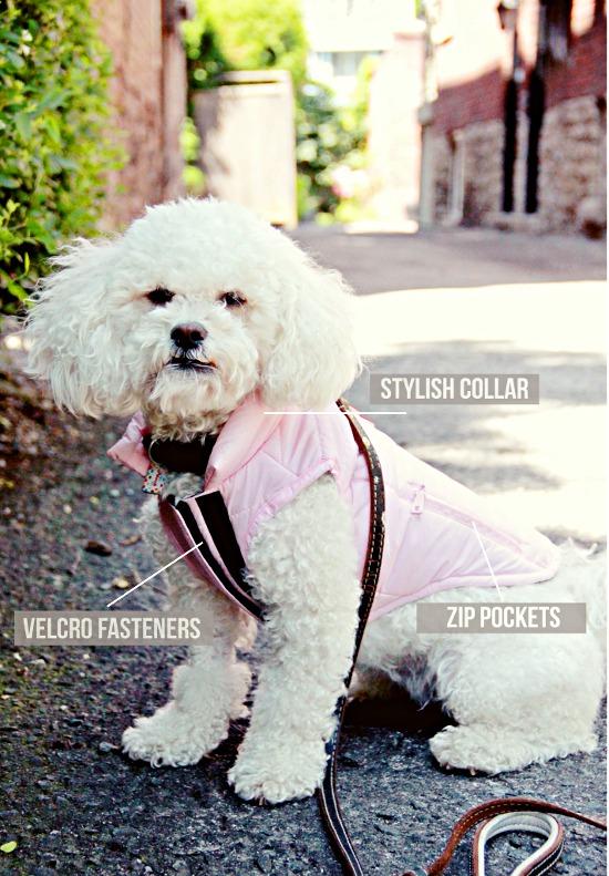canada-pooch-rain-jacket-pink