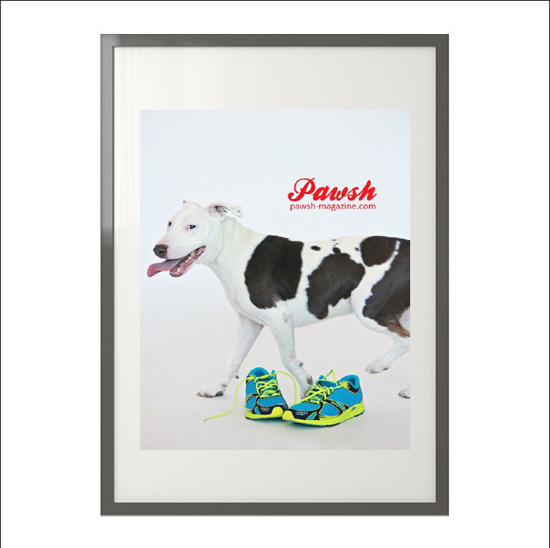 pawsh-print-shop-framed-550