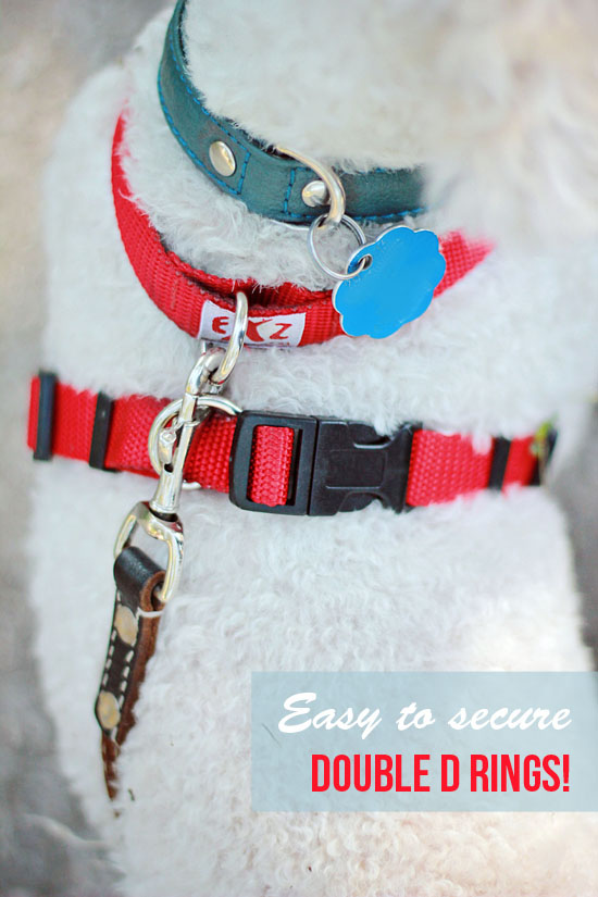 pawsh-magazine-modern-dog-harness-ez-x-2