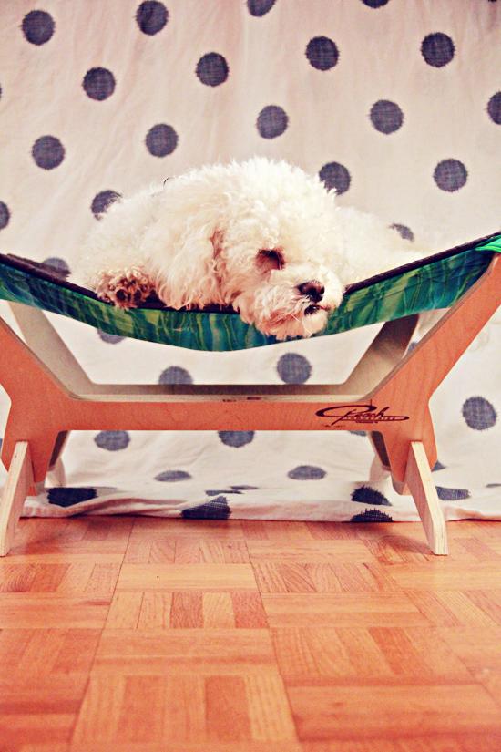 pet-bed-hammock-Pawsh-Magazine-2a