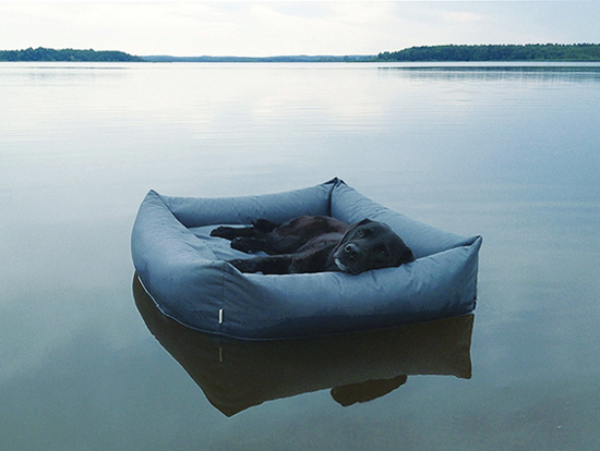 waterproof-dog-bed-Cloud-7-2