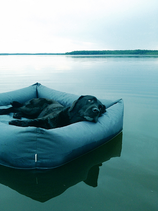 waterproof-dog-bed-Cloud-7-3