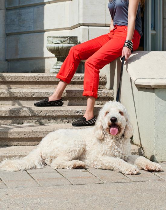 dog-fashions-1