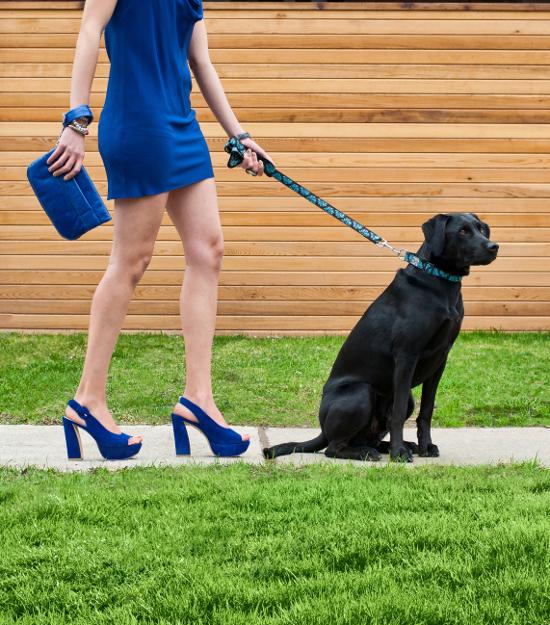 dog-fashions-2