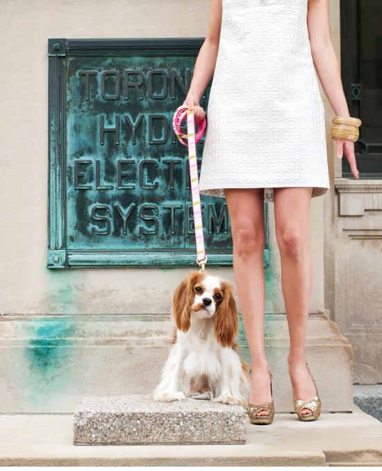 dog-fashions-3