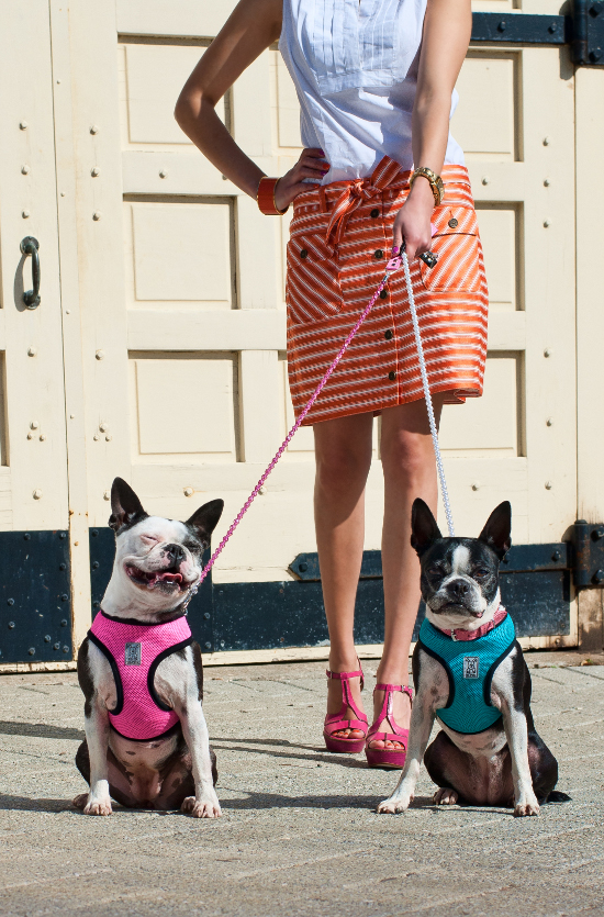 dog-fashions-4