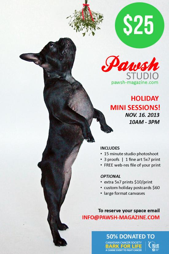 Bark-For-Life-Pawsh-Xmas-Promo-550