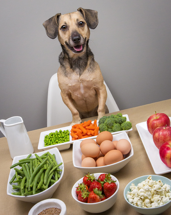 Pawsh-dog-friendly-human-food