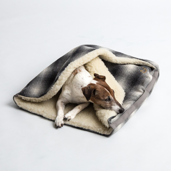 Pawsh-Magazine-dg-sleeping-bag-3