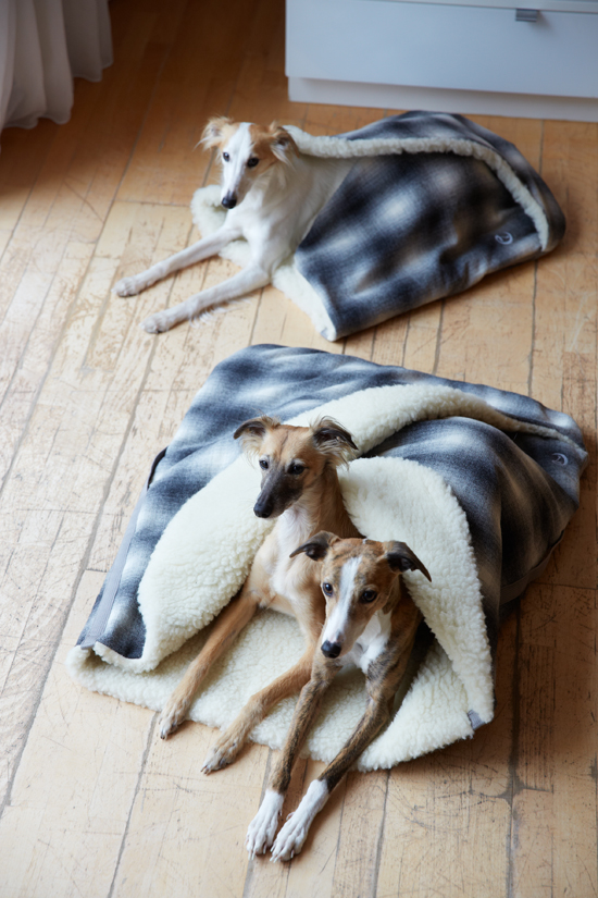 Dog Sleeping Bag And Bed