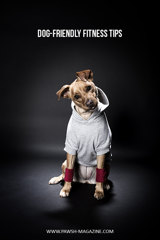 dog-friendly-workout-5-Pawsh-Magazine