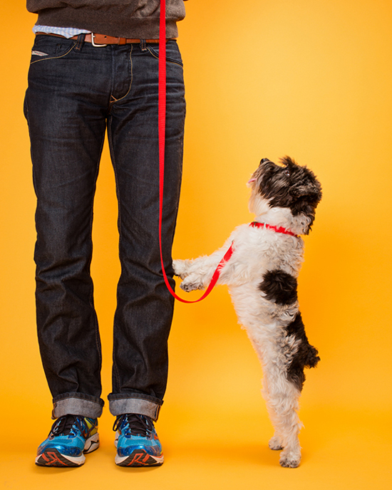 Pawsh-magazine-dog-leash-manners-2
