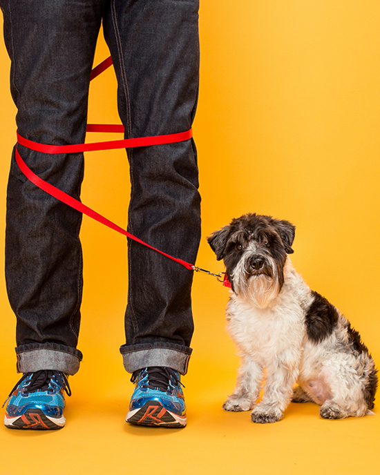 Pawsh-magazine-dog-leash-manners-6