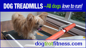 dog-treadmills-dogtrot-fitness-pawsh-magazine