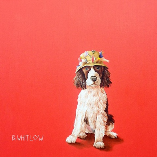 dog-portrait-2-Beth-Whitlow
