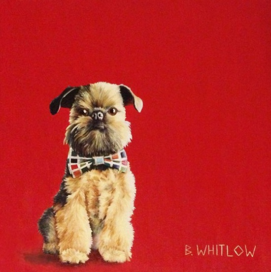 dog-portrait-5-Beth-Whitlow