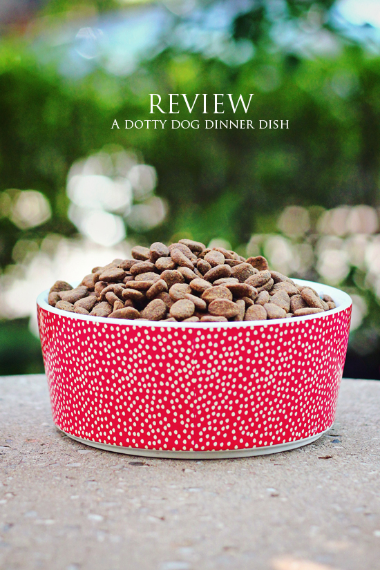 Waggo-dog-bowl-review-Pawsh-Magazine-5A