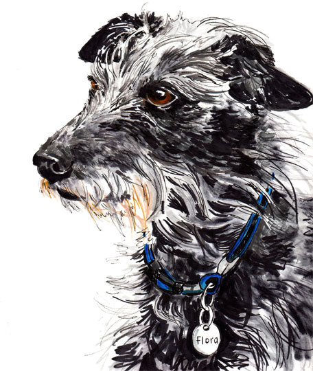 custom-dog-portraits-jo-chambers-1