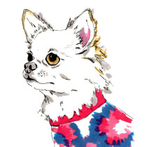 custom-dog-portraits-jo-chambers-4