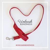 toronto-dog-magazine-unleash-kindness-campaign-INSTAGRAM