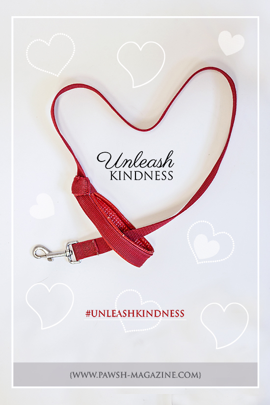 toronto-dog-magazine-unleash-kindness-campaign-WEBA