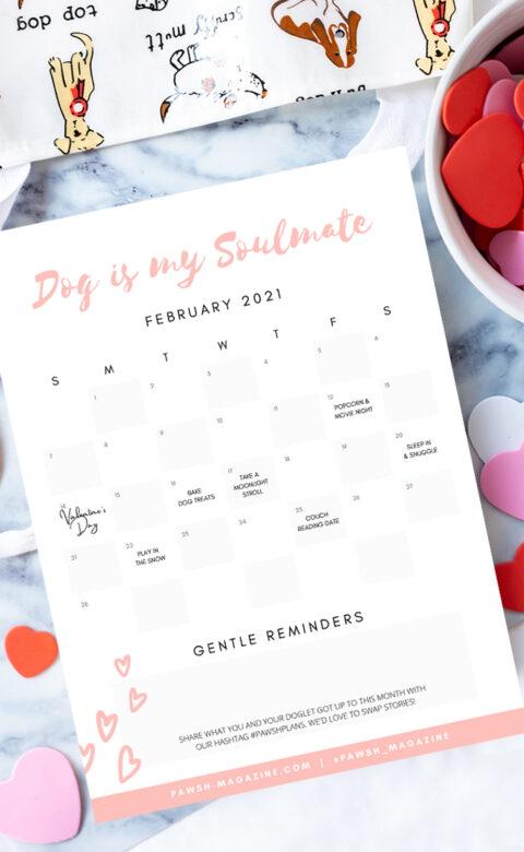 dog activity calendar
